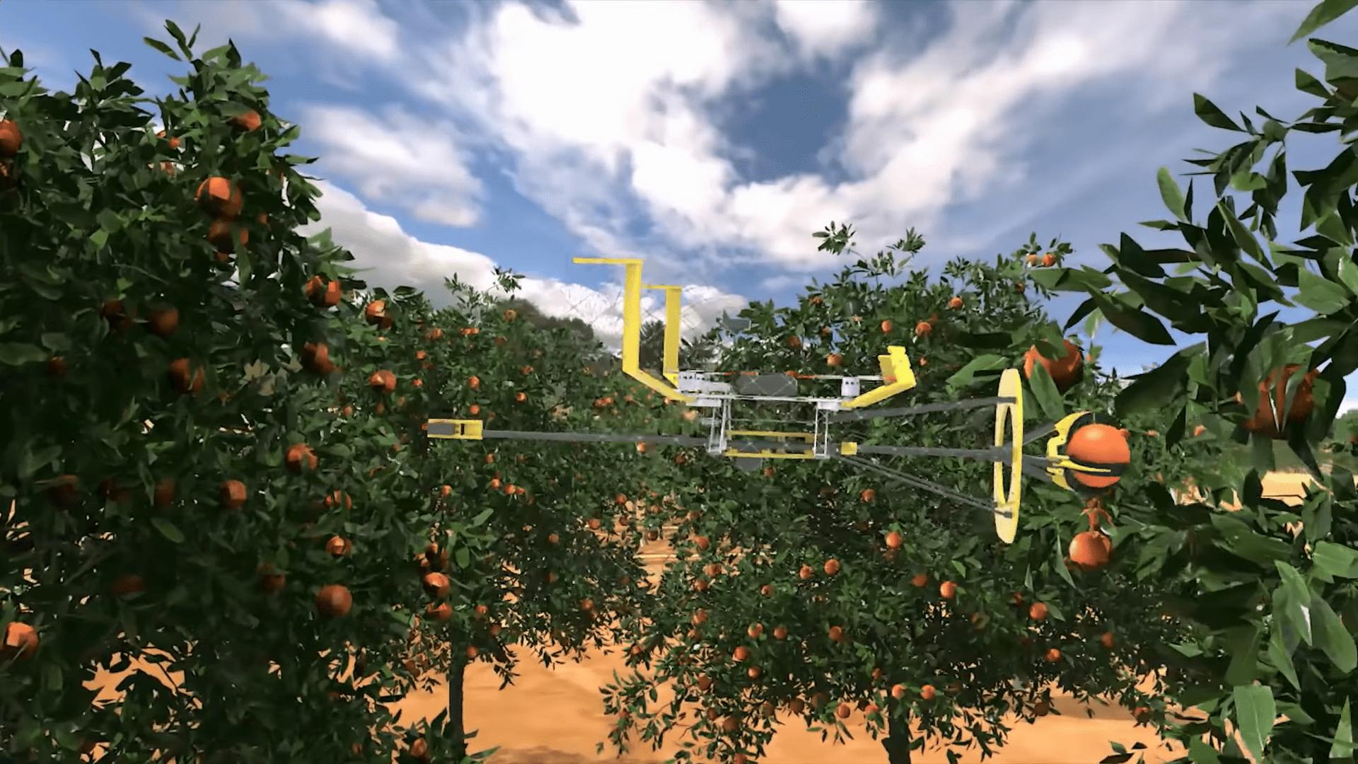 İsrailli uzmanlar, dünyadaki ağaçlarda bulunan meyvelerin yaklaşık %10'nun, onları toplayacak yeterli iş gücü olmadığı için ağaçlarda çürüyerek israfa gittiğini tahmin ediyorlar.