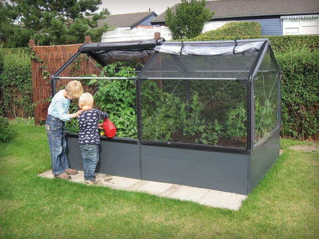 Hobi olarak serada sebze yetiştirmek isteyenler için küçük tiyolar.