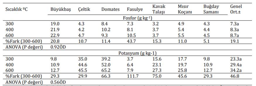 Farklı Sıcaklıklarda Üretilen Biyoçarların Fosfor ve Potasyum İçerikleri (1)