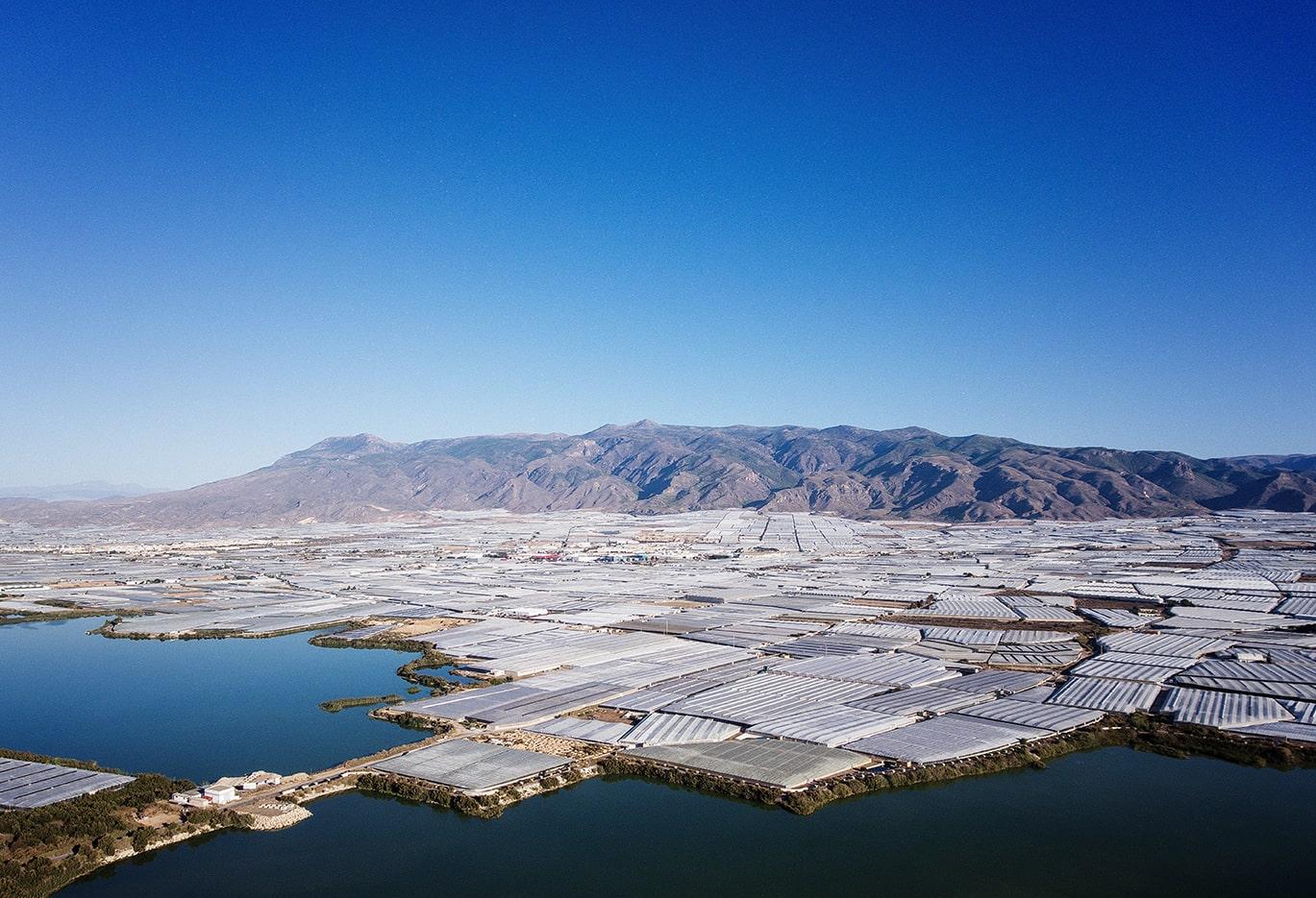 İspanya'nın Almeria ve Granada bölgelerinde devam eden ciddi soğuk ve yağışlar, üretimde büyük verim kayıplarının yaşanmasına neden oldu.