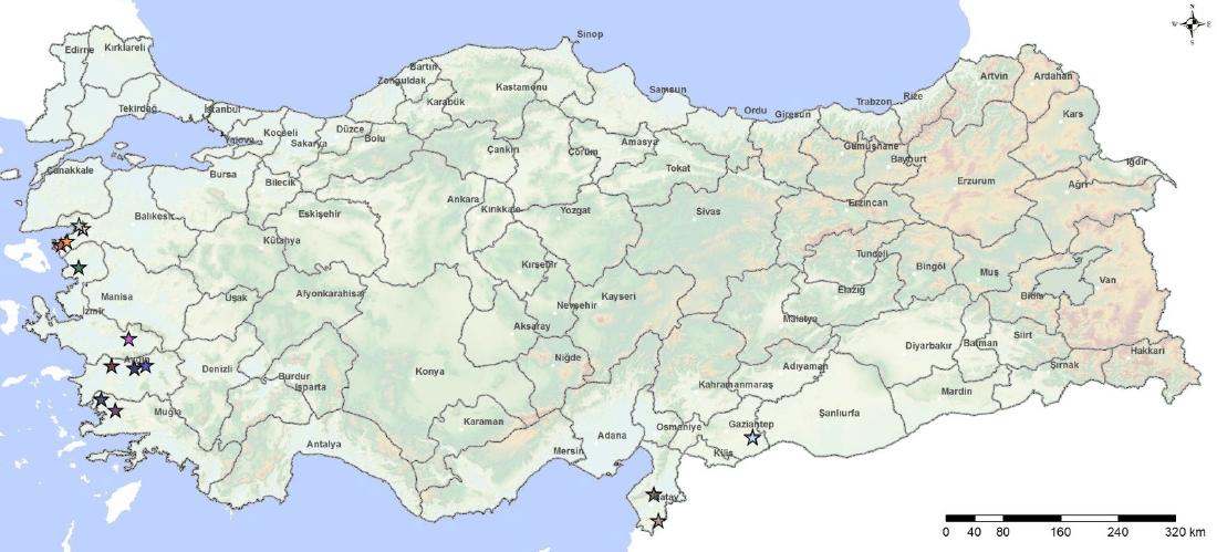 Ülkemizde pirina işleme tesislerinin dağılımı