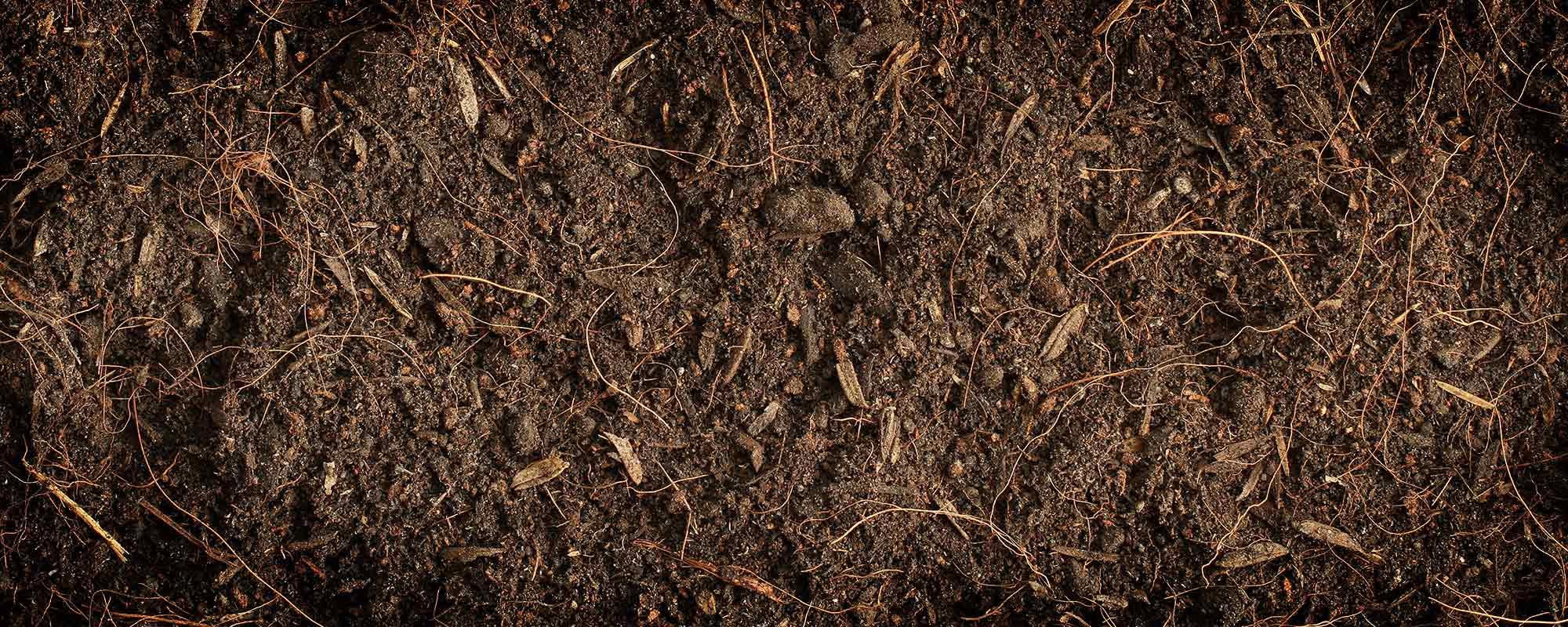 Toprağımızın bozulan fiziksel, kimyasal ve biyolojik dengesinin tekrar kurulabilmesi için organik madde ilavesi şarttır.