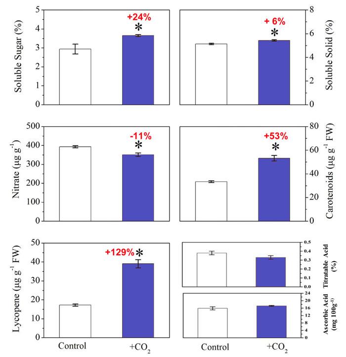 Tarımsal organik atıkların fermantasyonu ile CO2 zenginleştirmesinin farklı domates meyve kalite parametreleri üzerindeki etkisi. Kırmızı metindeki yüzdeler, kontrol koşullarına göre CO2'ye bağlı artışı (veya düşüşü) gösterir. Hata çubukları standart sapmayı temsil eder ve yıldız işareti (*) p ≤ 0,05'te önemli farkı temsil eder. Kaynak: Hao ve ark. (2020).