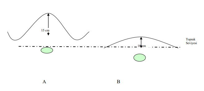 Patateste farklı dikim derinlikleri; 15 cm' lik toprak ile örtülen yüzeysel olarak dikilmiş bir yumru (A) ve 10 cm' lik toprak ile örtülen derin dikilmiş bir yumruyu (B) gösteren şematik resim.