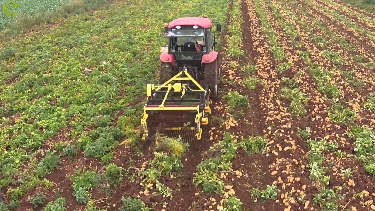 Yarı otomatik makineli hasat
