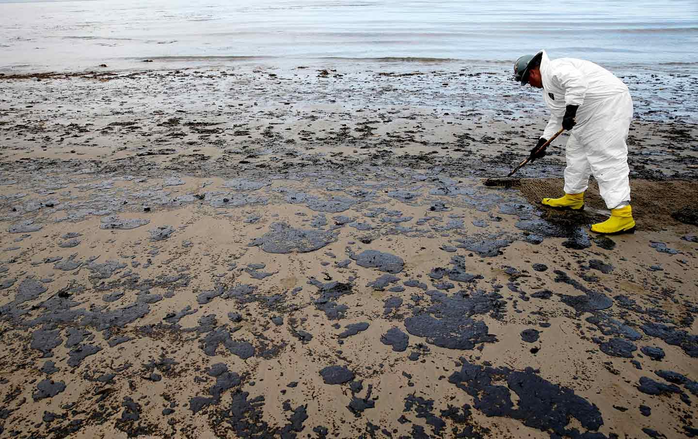 Biyoremediasyon, denizlerdeki ve kumsallardaki petrol sızıntılarını gidermek için popüler bir yöntemdir.