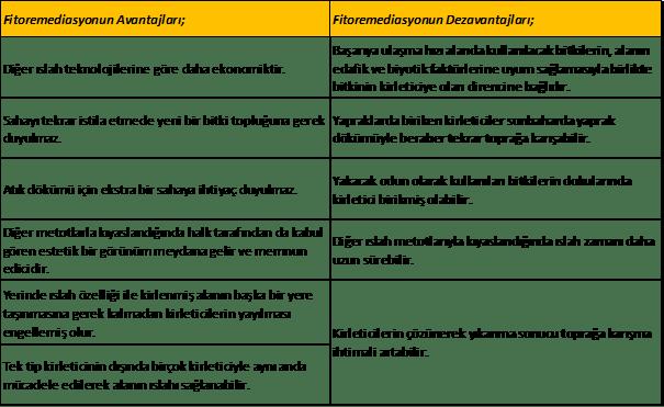 Fitoremediasyonun avantajları, dezavantajları