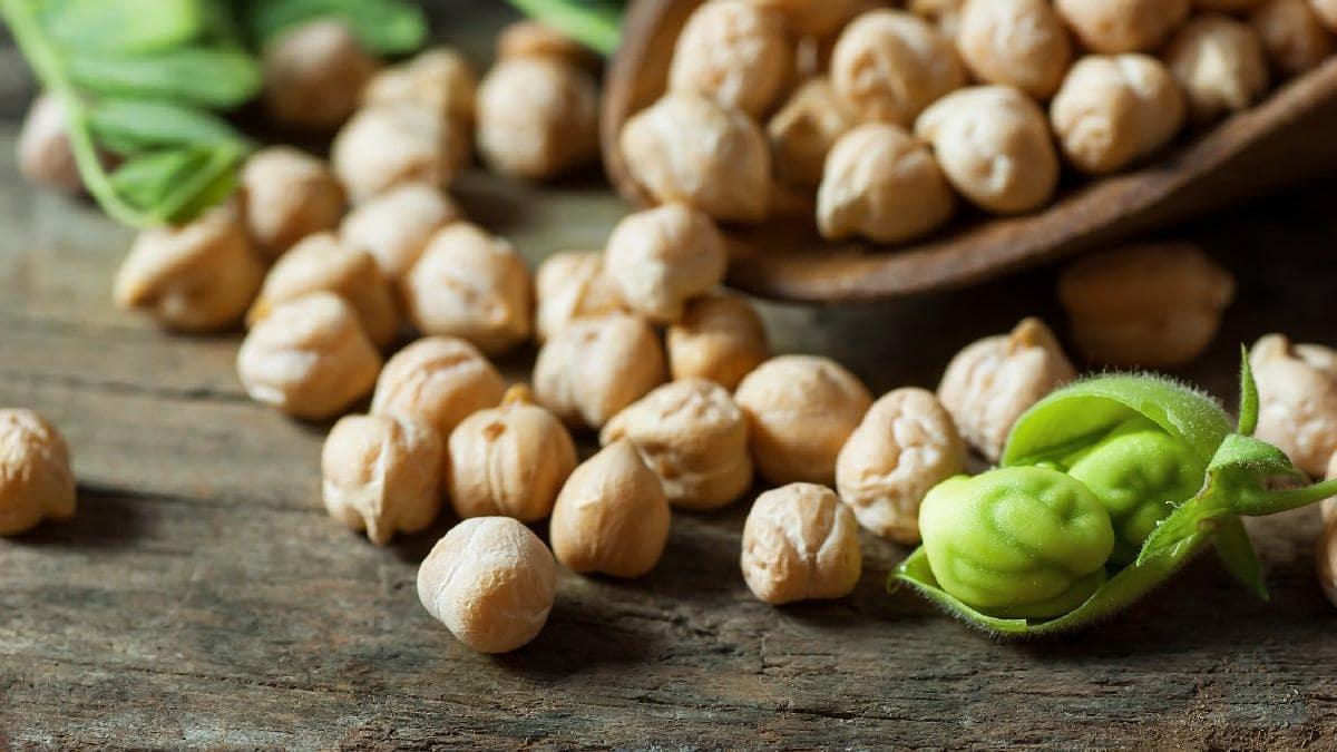 Nohut, diğer bitkisel ürünlere nazaran daha yüksek protein, vitamin, mineral ve daha düşük oranda yağ içermektedir.