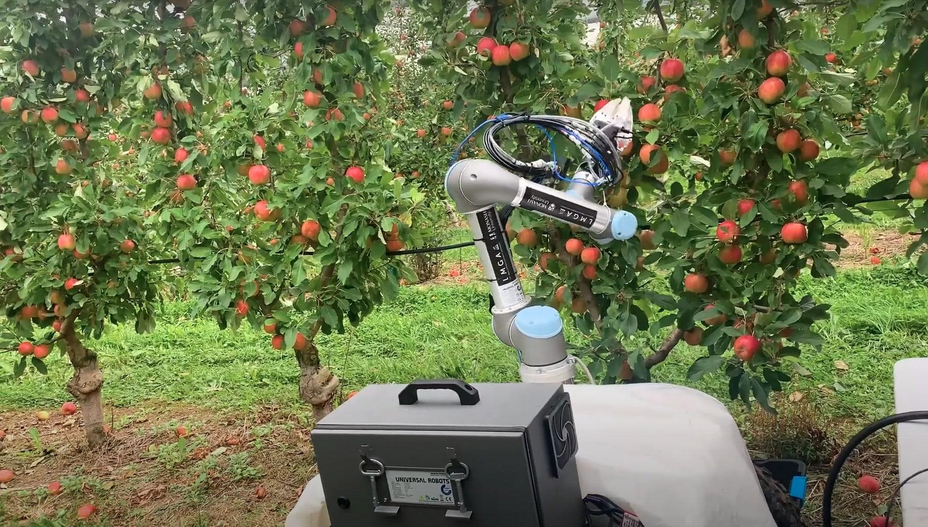 Gelişen teknolojiyle birlikte, robotların bitkisel üretimdeki varlıklarını her geçen gün daha da çok görüyoruz.