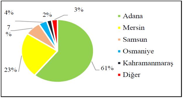 Türkiye'de soya üretim miktarının illere göre dağılımı (%)