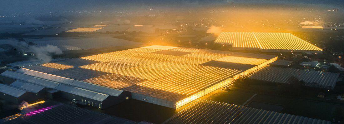 Tarımsal üretimde aydınlatma yatırımına girmeden önce, yetiştiricilerin var olan aydınlatma seçeneklerini bilerek, seraların için en iyisini seçmeleri önemlidir.