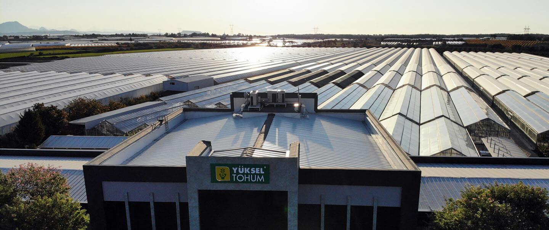 İspanya'nın Almeria bölgesindeki çiftçi ve ihracatçıların tercihi, Yüksel Tohumun yeni biber çeşitleri olan Princessa, Donnalucata ve Elmas oldu.