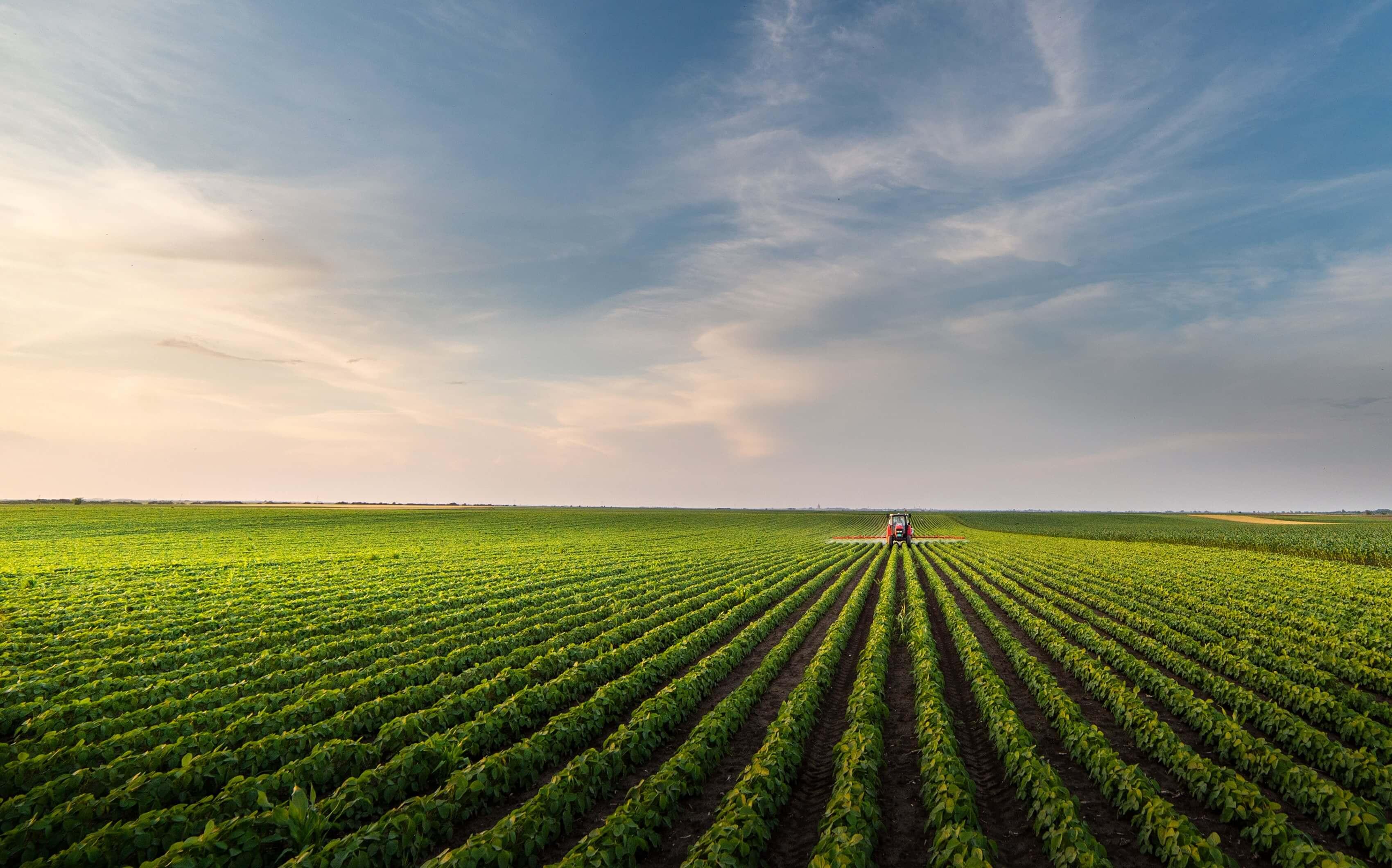 Tarımsal işletmelerin ortalama büyüklüğünün düşük olması Türk Tarım sektörü açısından yapısal bir problem olarak gözükmektedir.