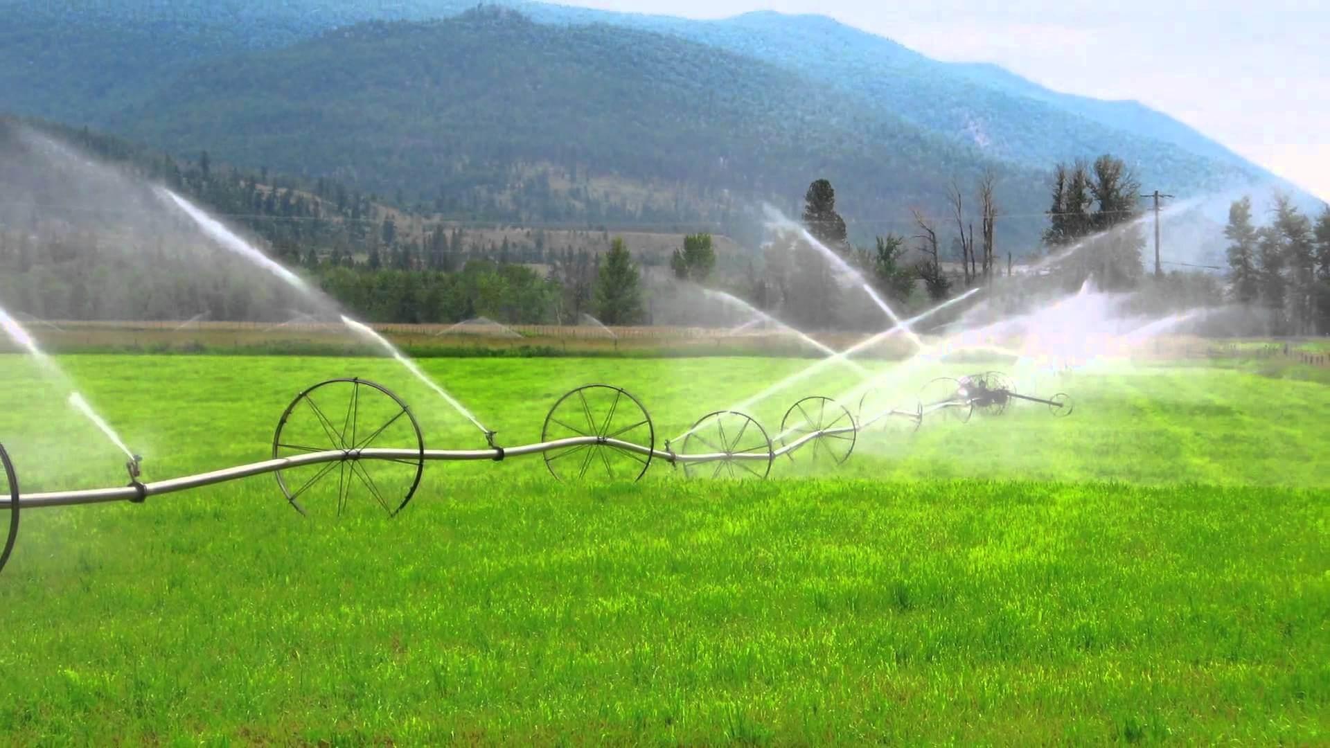 Dünyada nüfus artışına paralel olarak artan gıda ihtiyacı ile birlikte tarımsal su ihtiyacı da artmaktadır.