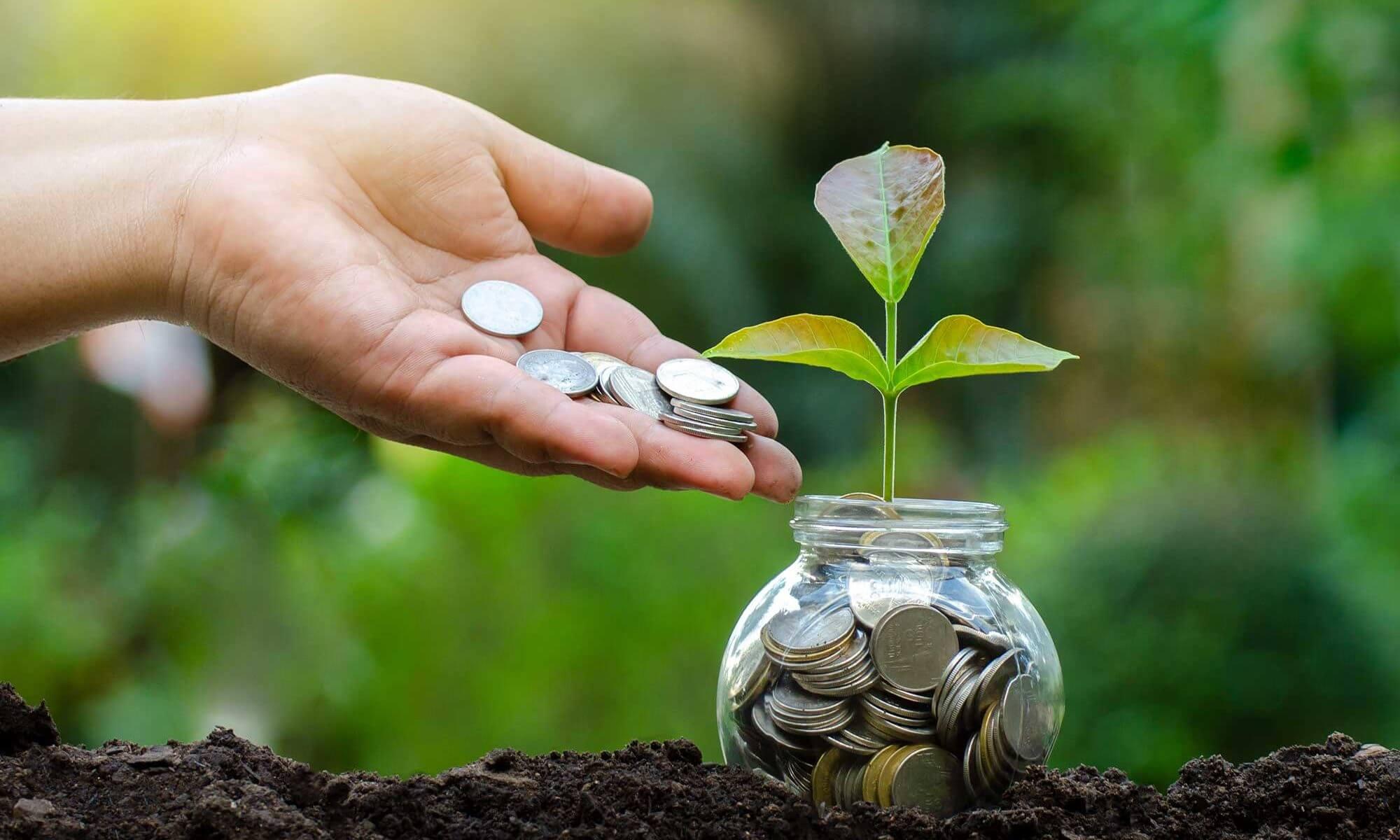 Tarım sektörü, finansal pazarlar içerisinde yapısal özellikleri ile ihtiyaçları doğru belirlenmesi gereken sektörlerin başında gelmektedir.