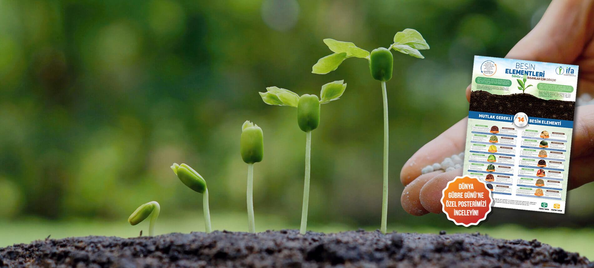 13 Ekim Dünya Gübre Günü'nde, Toros Tarım, hem bitkiler hem de diğer canlılar için hayati önem taşıyan besin elementleri hakkında kapsamlı bir çalışma hazırladı.