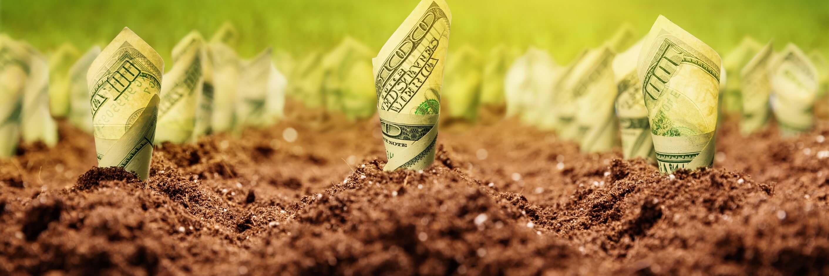 Tarımsal işletmelerde doğru kredilendirme modelleri ile yapılan yatırımlar, işletmelerin büyümesine olumlu katkılar sağlamaktadır.