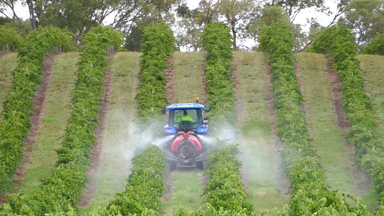 Bağlarda kimyasal zirai mücadele uygulama tekniklerini öğrenmek mücadelenin verimliliğini arttırır ve bitkilere olası bir zararı önler.