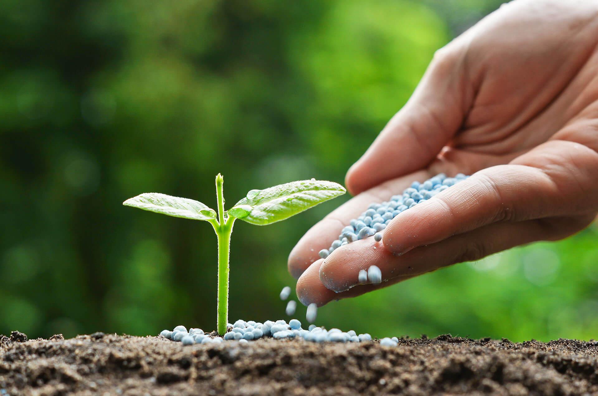 Bitkilerin beslenme ve büyümeleri için gerekli olan besinleri katı yada sıvı normlarda barındıran maddelere gübre denilir.