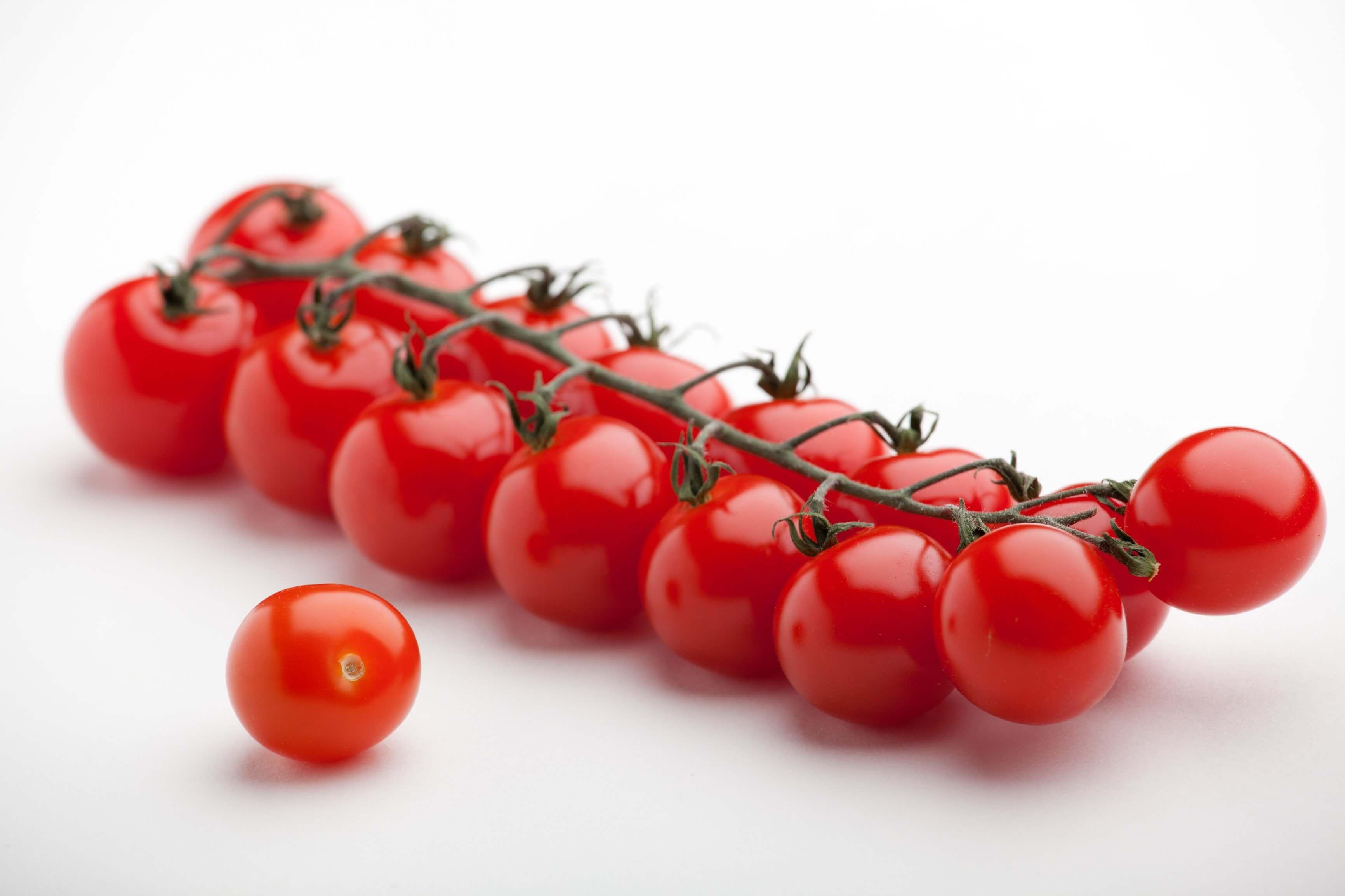 Aynı tür bitkinin iki farklı çeşidinin çaprazlanması sonucu elde edilen tohuma melez(hibrit) tohum denilir. Hibrit tohum daha sağlıklı, daha verimli ve daha kaliteli ürün elde etmek için yapılır.