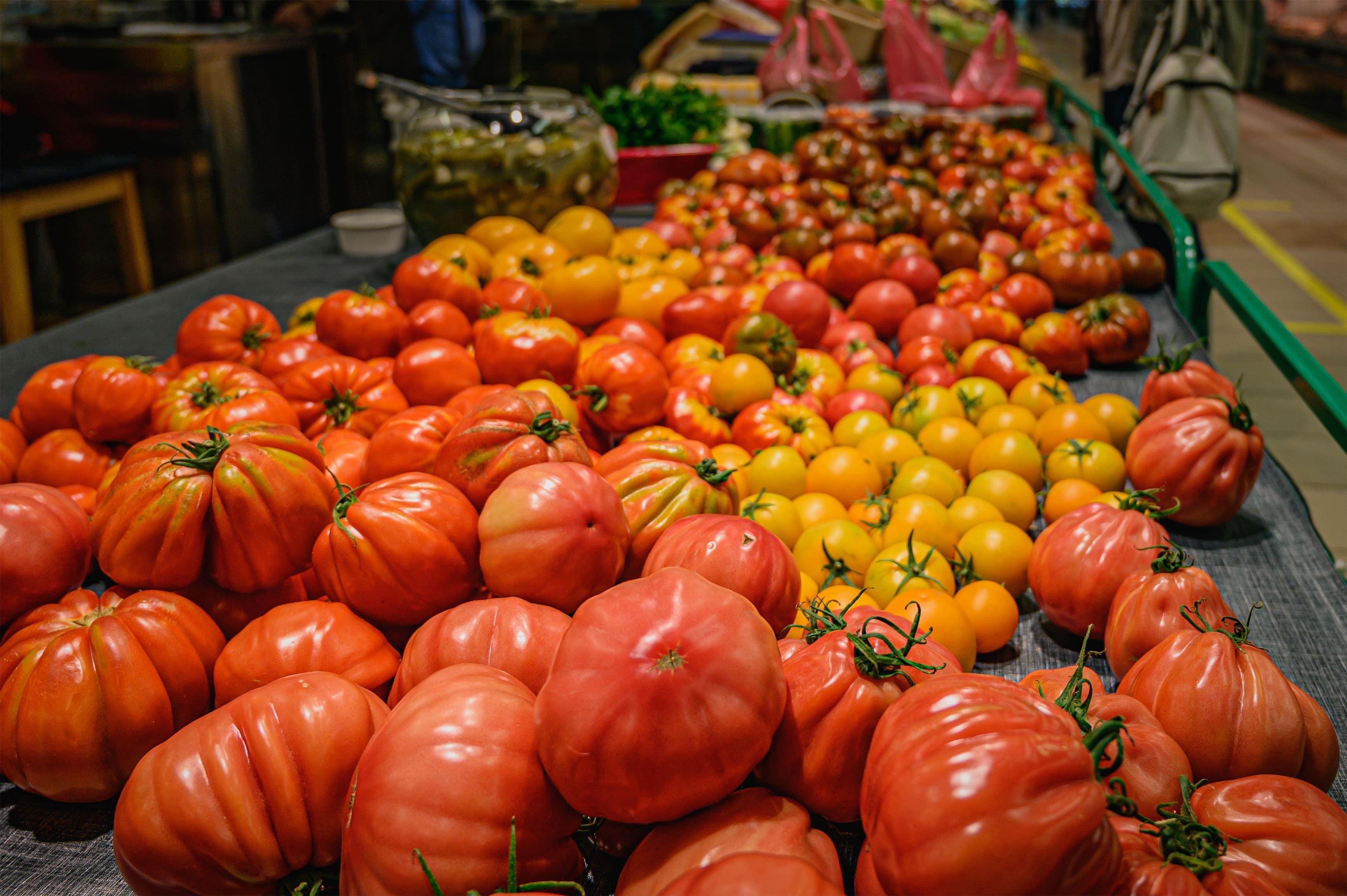 2020 yılında domates ihracatında %20 büyüme yaşayan Meksika'da, büyüme bu yılın ilk çeyreğinde de devam etti.