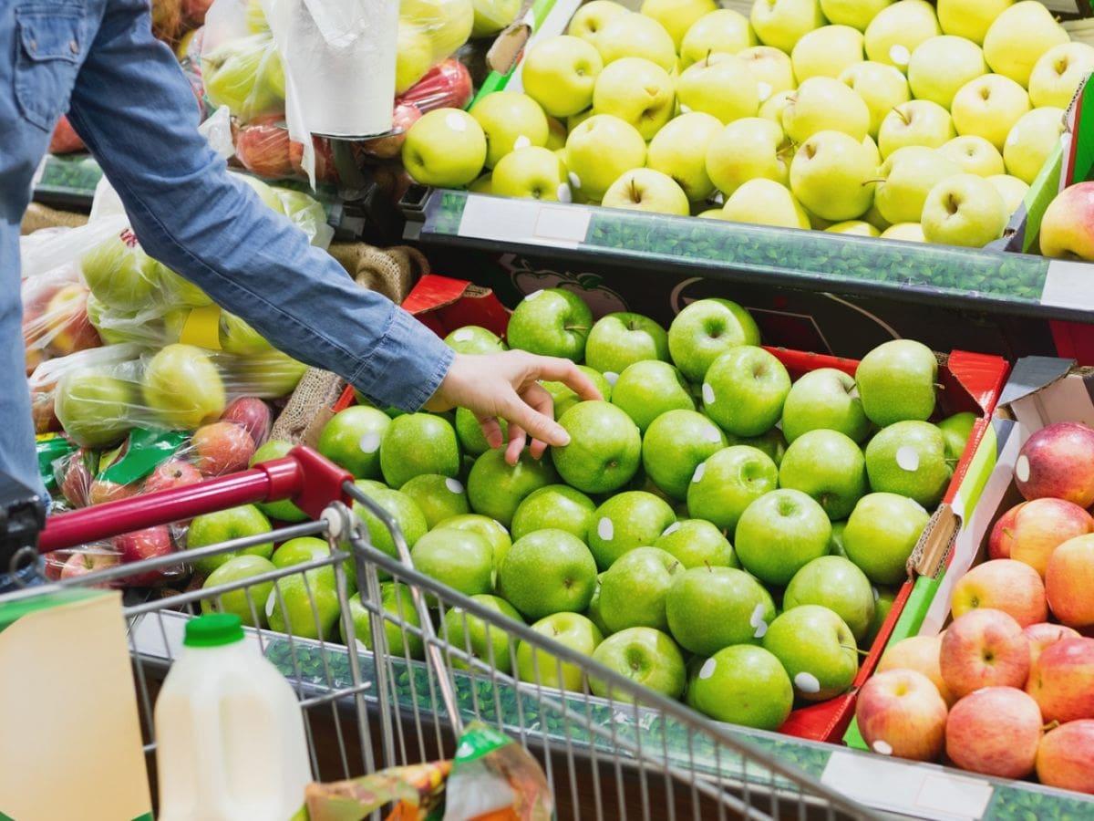 Doğu Avrupa'daki elma üreticisi ülkeler, 2021-2022 sezonunda şimdiye kadarki en büyük elma hasadını gerçekleştirecek.