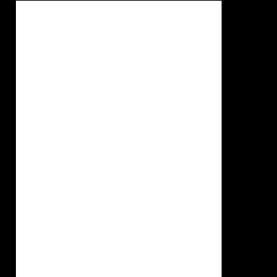Broken Symmetry Logo