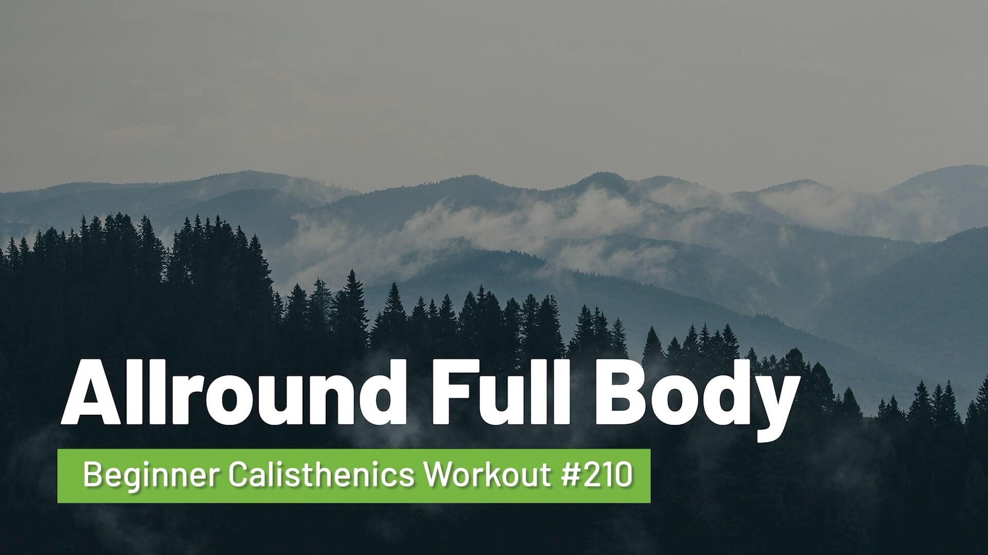 Workout #210