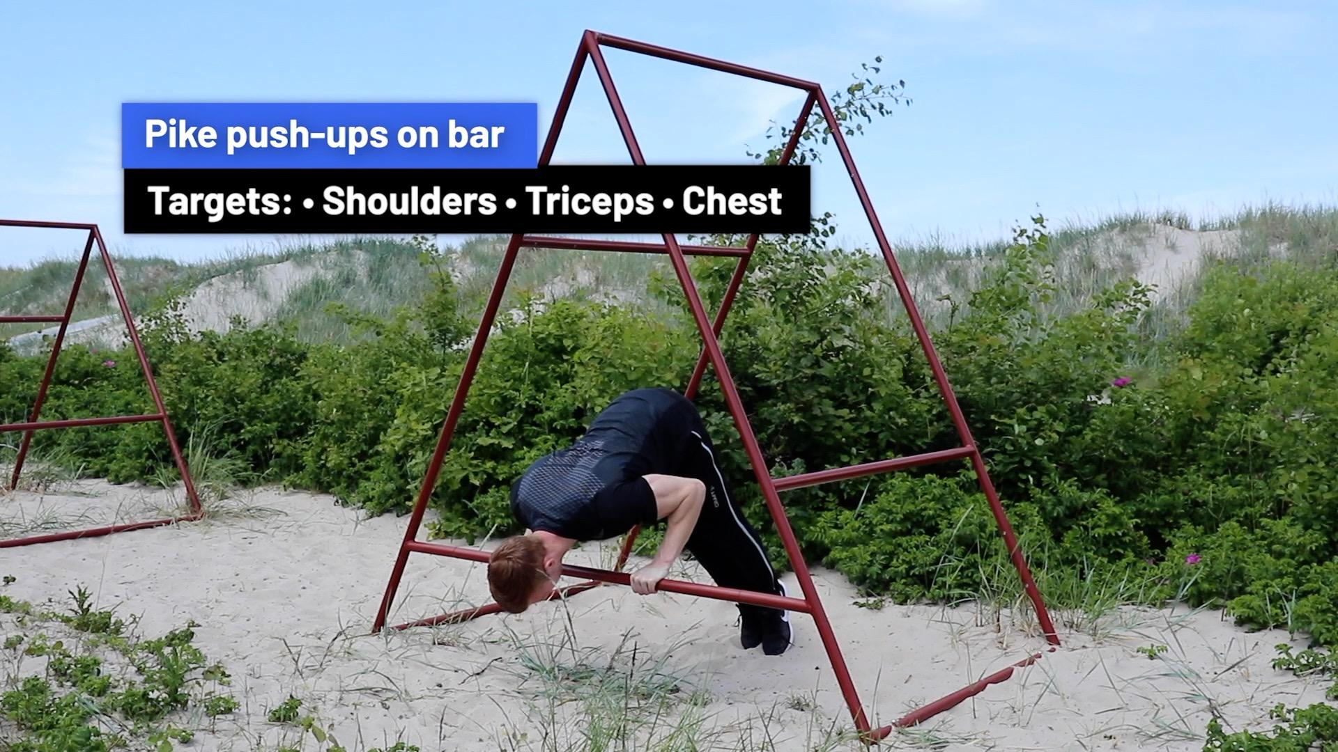 Pike push-ups on bar