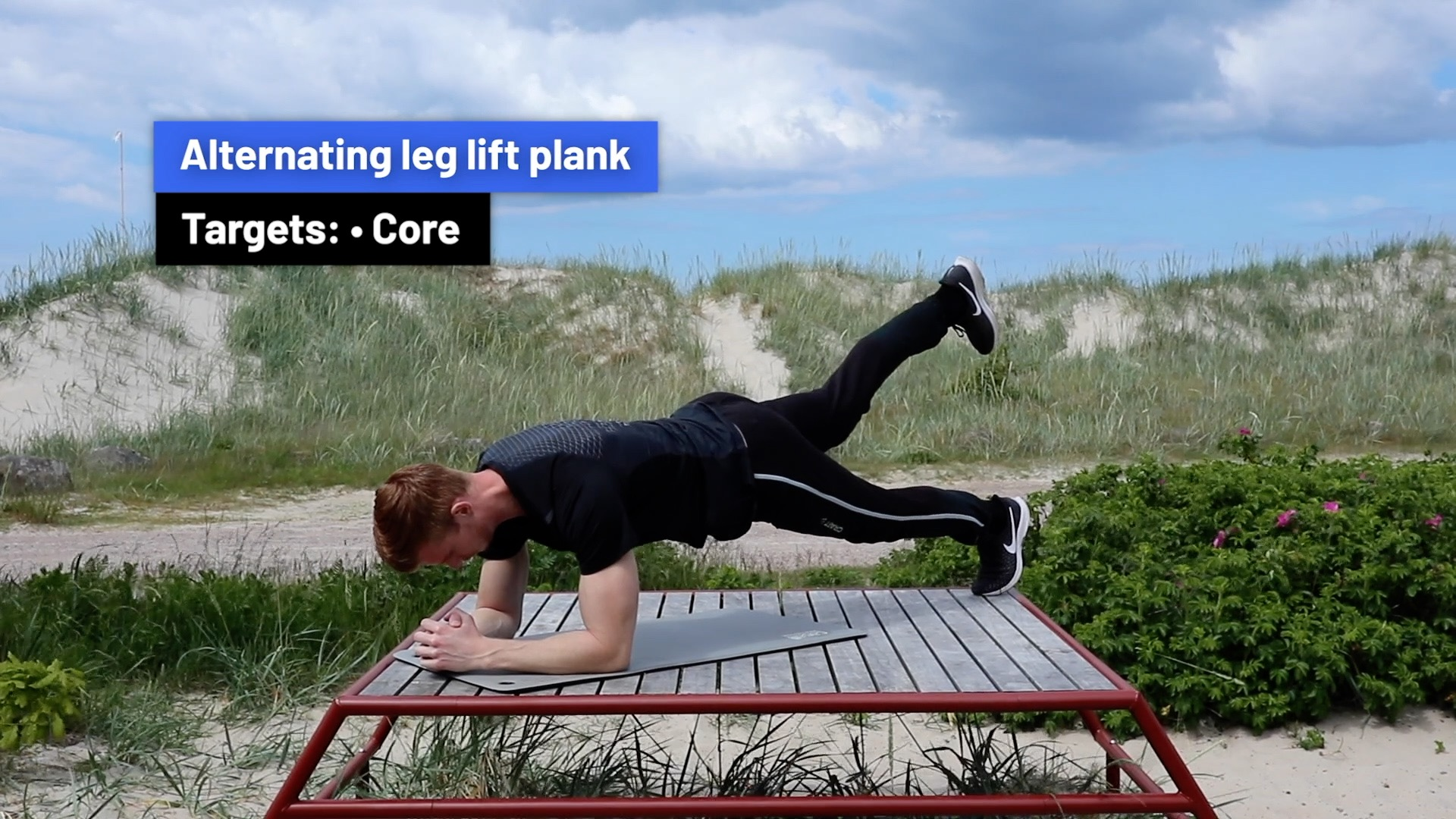 Alternating leg lift plank