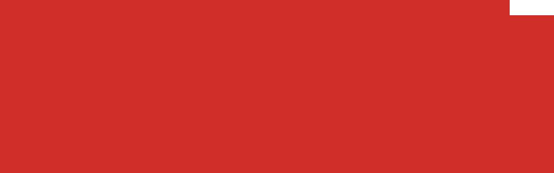 logo carandini