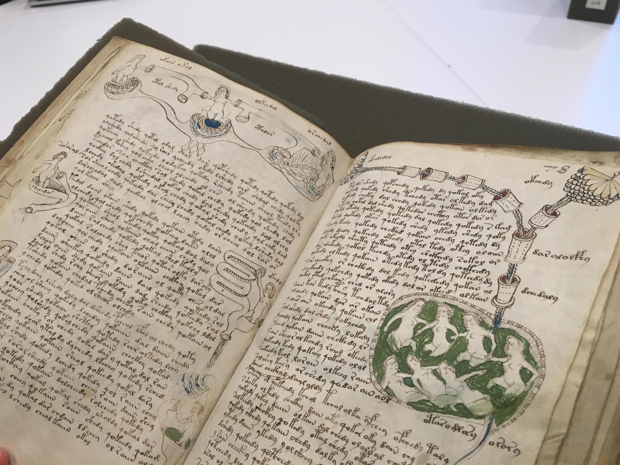 Лист рукописи Войнича из Йельской библиотеки