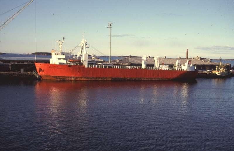 Palletized cargo carrier
