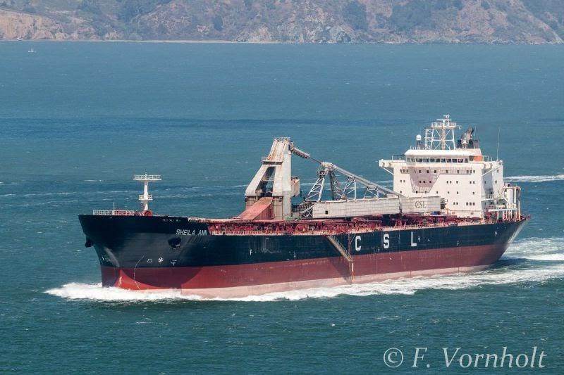 Self discharger bulk carrier