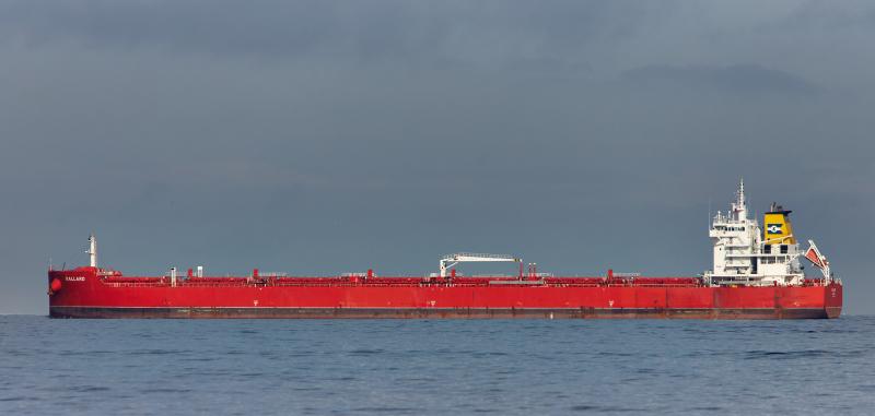 Caustic soda bulk carrier