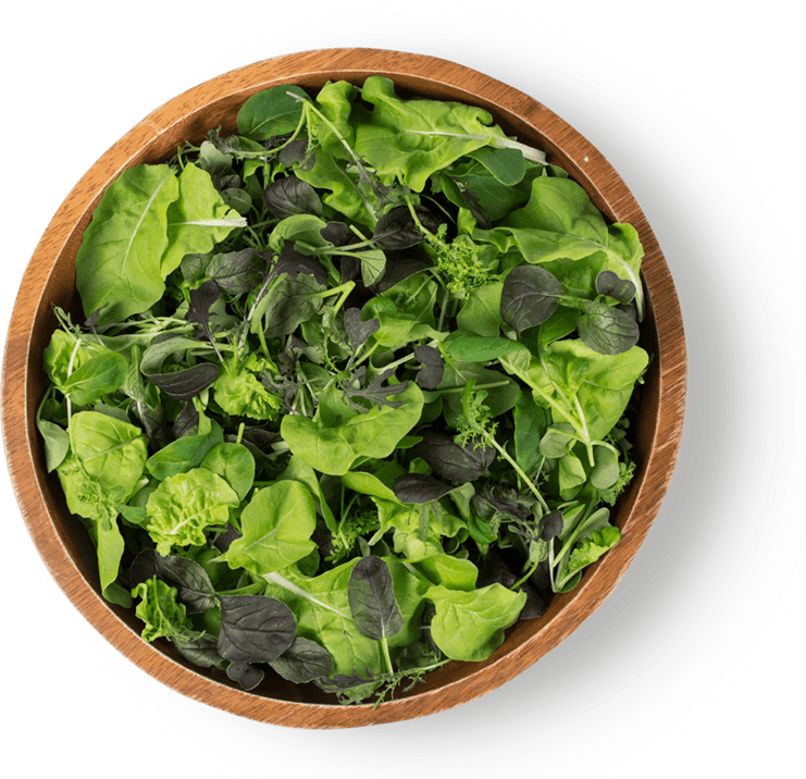 Bowl of mixed greens