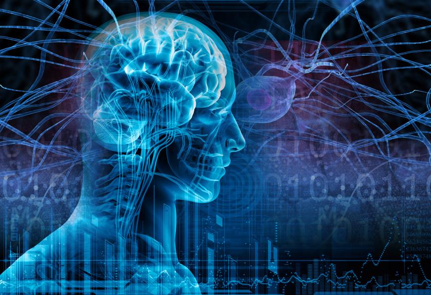 epilepsy graphic 865x593