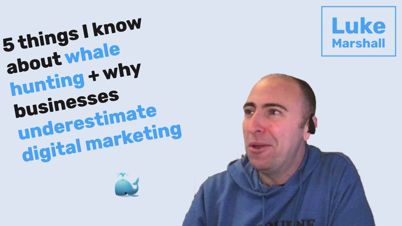 5 things I know about whale hunting + why businesses underestimate digital marketing