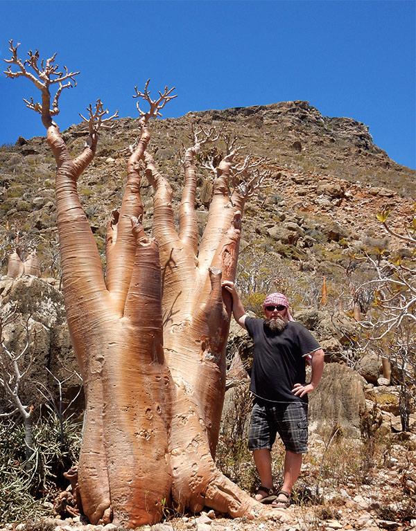 Lubos Hojny on Socotra Island with Adenium Socotranum