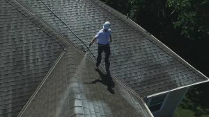 professional cleaning black streaks on your roof