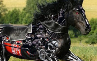 A black stallion which a combination of biological and mechanical components