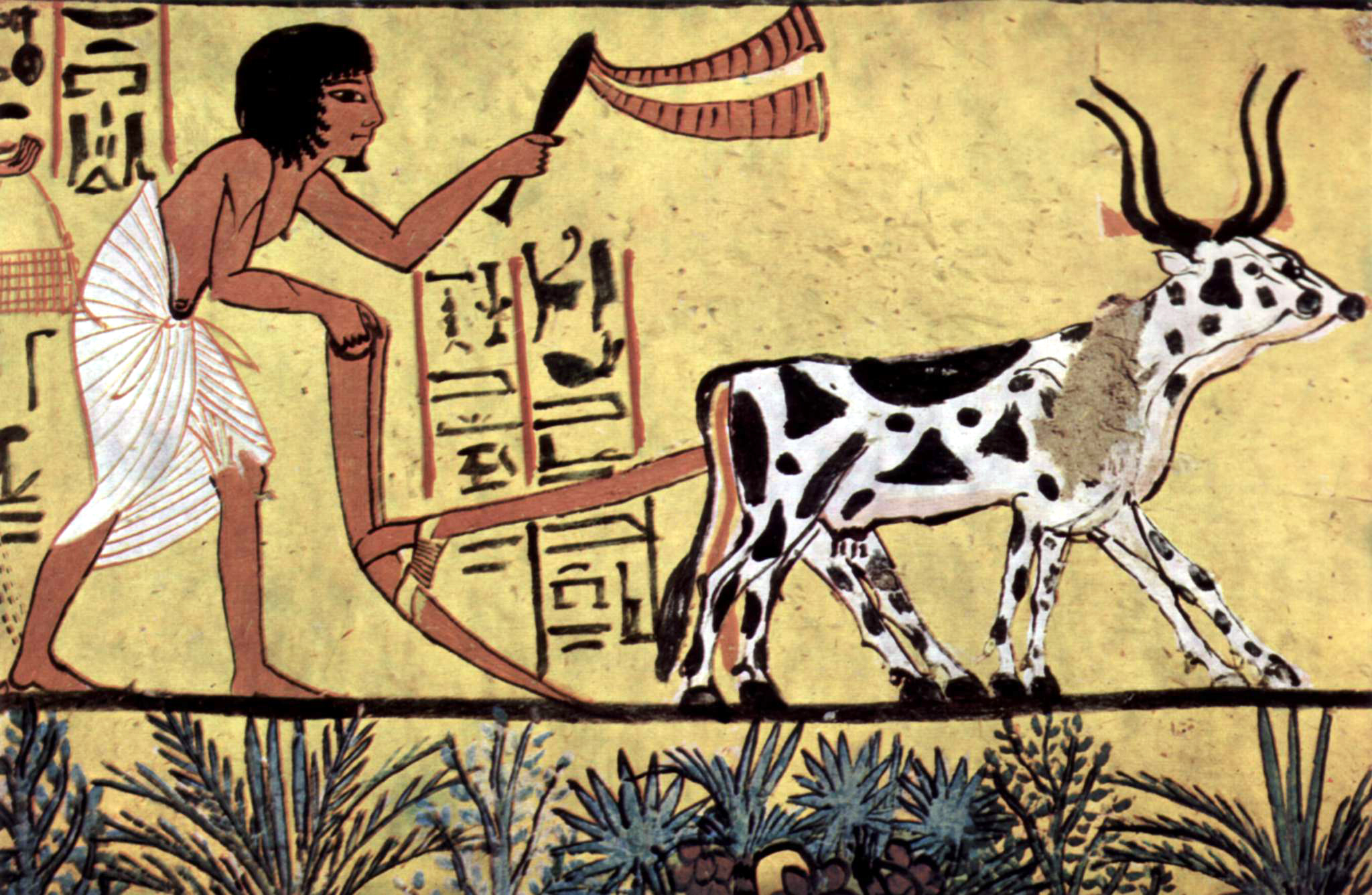 Egyptian painting of agriculture