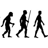 Black and white image of human evolution