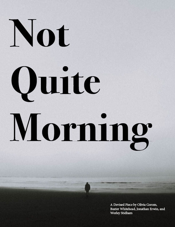 "Grey background with title ""Not Quite Morning"""