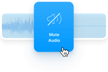 Mute the audio
