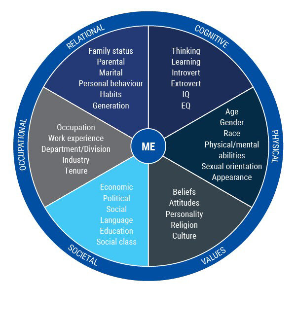A diversity wheel, showing the different factors that can come into play when considering diversity.