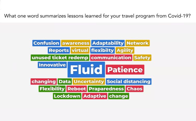 """Word cloud created from responses to the question, """"What one word summarizes lessons learned for your travel program from Covid-19?"""""""