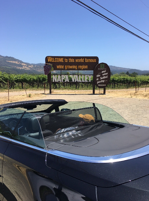 """A car parked in front of mountains, a vineyard and a sign that reads """"Welcome to this world famous wine growing region. Napa Valley"""""""