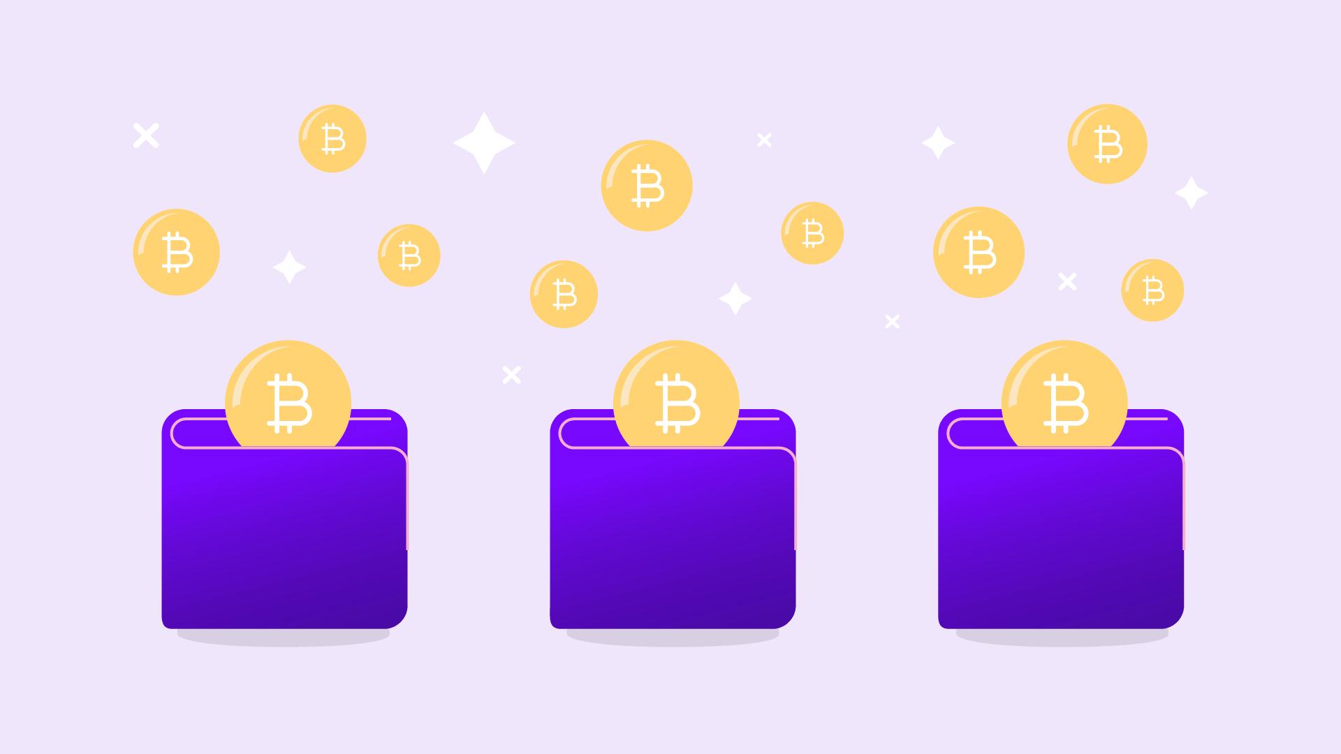 Wallets de criptomonedas