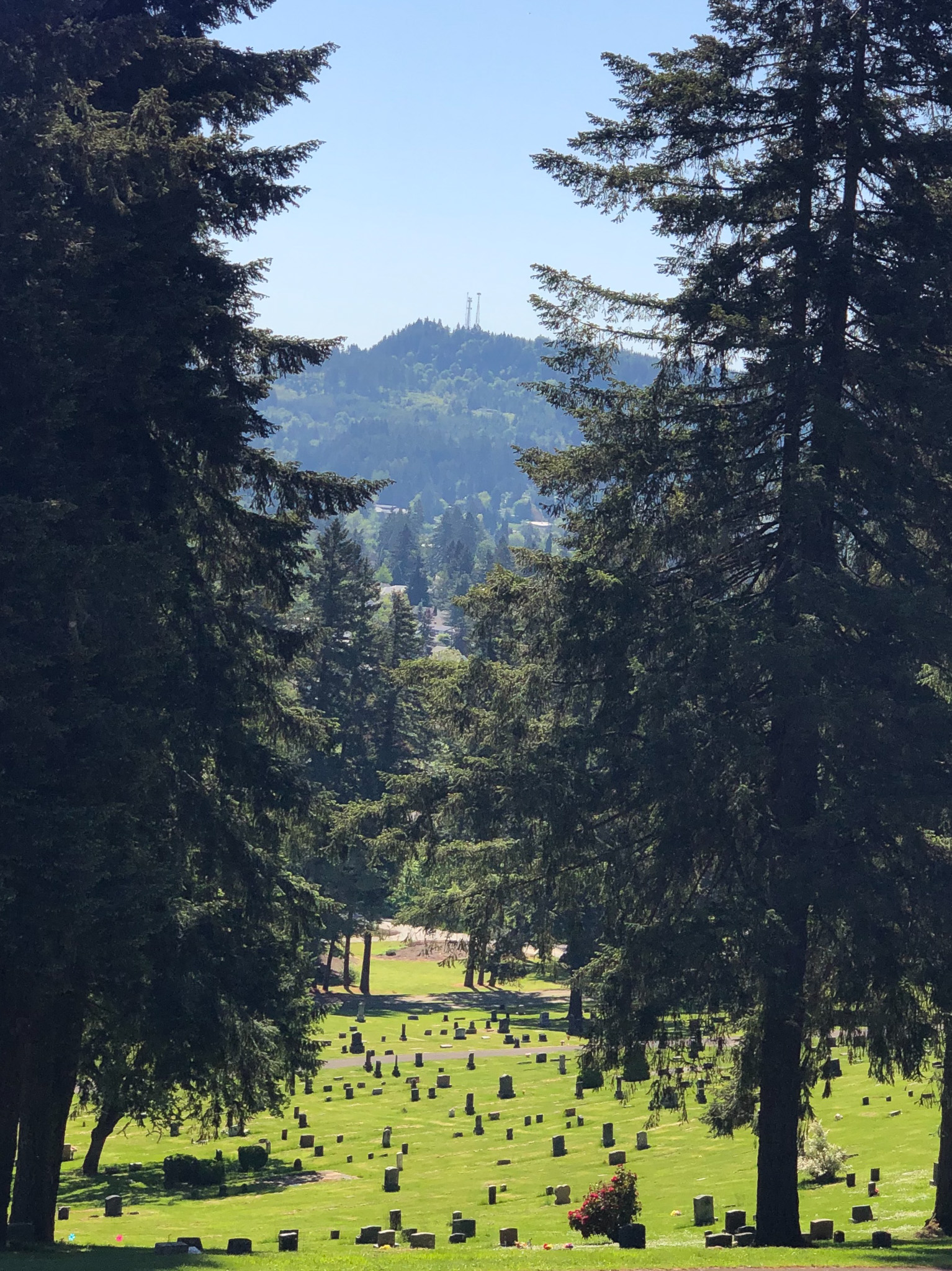 view from fir grove cemetery